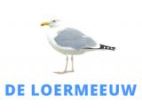 Mediapartners - ElburgerSC
