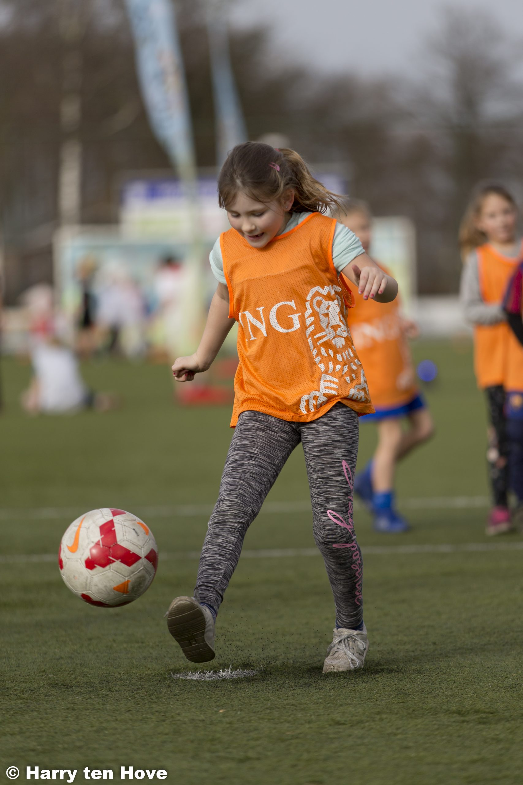 KNVB Voetbalfestival groot succes! - Elburger SC
